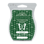 Winter Pine Fragrance Scentsy