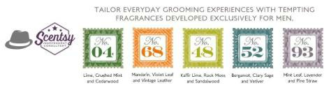 Scentsy Groom
