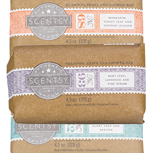 Shampoo, Shave and Shower Bar Scentsy