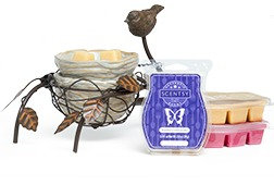 Scentsy Mothers Day Warmer Bundle